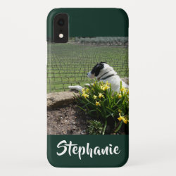 Case-Mate Barely There Apple iPhone XR Case with Collie Phone Cases design