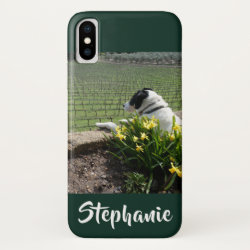Case-Mate Barely There Apple iPhone XS Case with Collie Phone Cases design