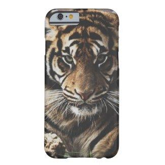 caseTiger Casecase iPhone 6 Case