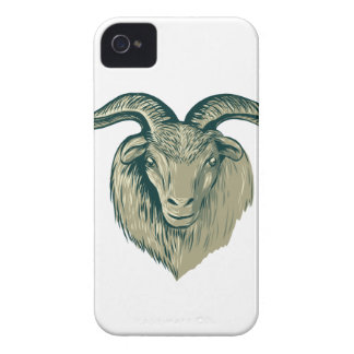 Cashmere Goat Head Drawing iPhone 4 Cover