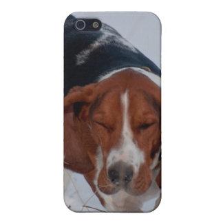 Caso 1 de Basset Hound iPhone 5 Carcasas