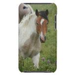 Caso acortado de iTouch del caballo de la pintura Case-Mate iPod Touch Coberturas