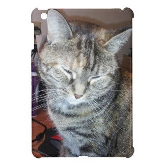Caso adaptable el dormir Ipad del gatito