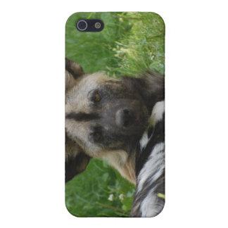 Caso africano del iPhone 4 de la foto del perro sa iPhone 5 Cobertura