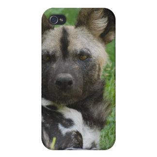 Caso africano del iPhone 4 del perro salvaje iPhone 4/4S Carcasa
