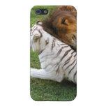 Caso africano del iPhone del león iPhone 5 Carcasa