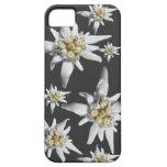 Caso alpino de Iphone de la flor de Edelweiss iPhone 5 Funda