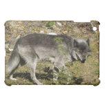 Caso animal del iPad de la fauna del lobo gris