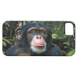 Caso animal del iPhone 5 de la fauna del gran mono iPhone 5 Carcasas