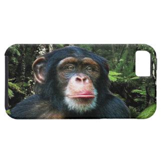 Caso animal del iPhone 5 de la fauna del gran mono iPhone 5 Case-Mate Cárcasas
