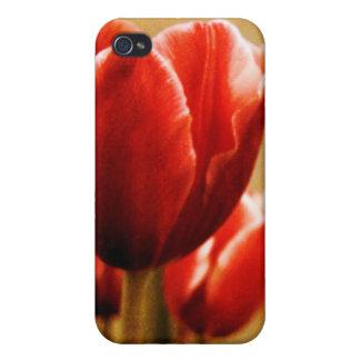 Caso antiguo del iPhone 4G de los tulipanes iPhone 4/4S Fundas