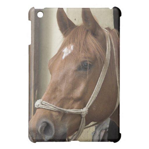 Caso árabe del iPad del caballo