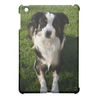Caso australiano del iPad de la foto del perro de