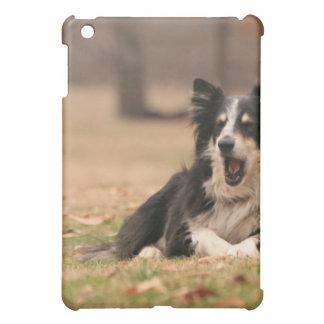 Caso australiano del iPad del perro de pastor