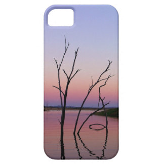 Caso bonito del iPhone 5 de las reflexiones de la  iPhone 5 Case-Mate Cobertura