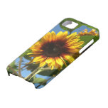 Caso brillante del iPhone del girasol iPhone 5 Case-Mate Cárcasa