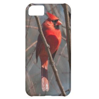 Caso cardinal de Barely There del iPhone 5 Funda Para iPhone 5C