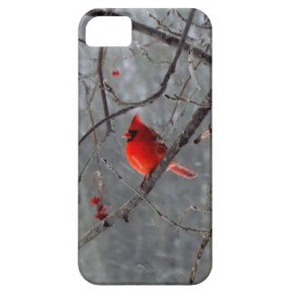 Caso cardinal masculino del iPhone 5 iPhone 5 Case-Mate Carcasa
