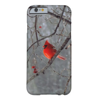Caso cardinal masculino del iPhone 6