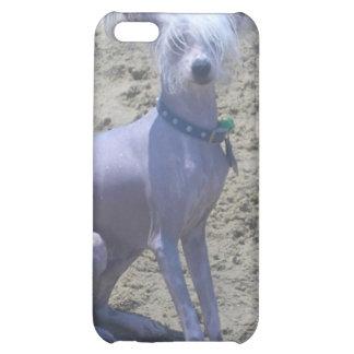Caso con cresta chino del iPhone del perro