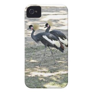 Caso coronado negro del iPhone 4 de la grúa iPhone 4 Protectores