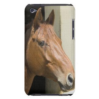 Caso cuarto americano de iTouch del caballo Barely There iPod Carcasas