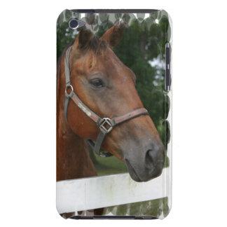 Caso cuarto de iTouch de la foto del caballo Case-Mate iPod Touch Carcasa