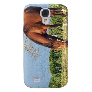 Caso cuarto del iPhone 3G de la foto del caballo