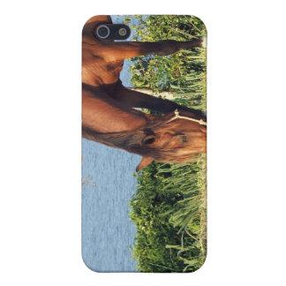 Caso cuarto del iPhone 4 del caballo iPhone 5 Fundas