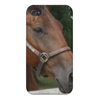 Caso cuarto del iPhone de la foto del caballo iPhone 4/4S Carcasas