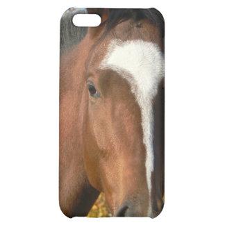 Caso cuarto del iPhone del caballo