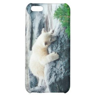 Caso curioso del iPhone de Cub del oso polar