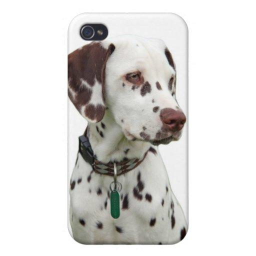 Caso dálmata del iphone 4 del perrito, idea del re iPhone 4 coberturas