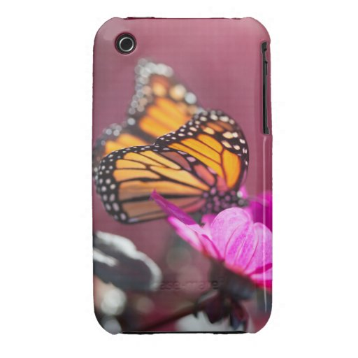 Caso de Barely There de la mariposa de monarca Case-Mate iPhone 3 Protector