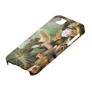 Caso de Barely There del iPhone 5 de las anémonas  iPhone 5 Carcasa