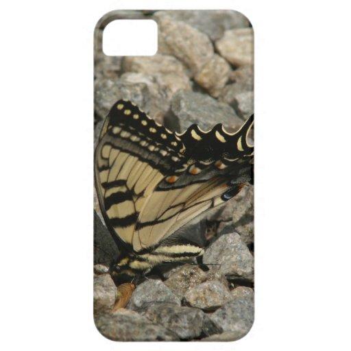 Caso de Barely There del iPhone 5 de Swallowtail iPhone 5 Fundas
