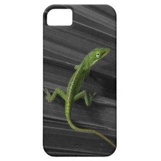 Caso de Barely There del iPhone 5 del lagarto verd iPhone 5 Cárcasa
