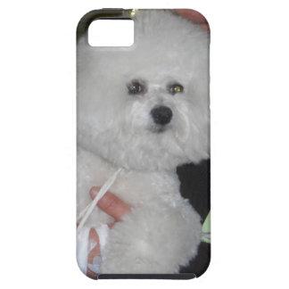 Caso de Bishon Frise iPhone5 Funda Para iPhone SE/5/5s