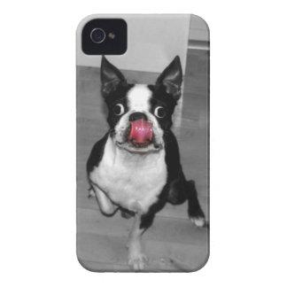 Caso de Boston Terrier Iphone 4s Funda Para iPhone 4