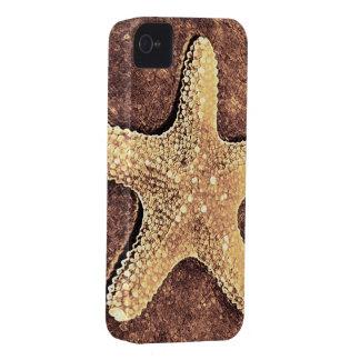 Caso de bronce del iPhone 4 de las estrellas de ma iPhone 4 Case-Mate Cárcasa