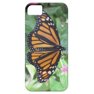 caso de butterfly2 iphone5 iPhone 5 carcasas