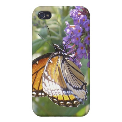 Caso de cáscara de la mariposa de monarca #2 iPhone 4 protector