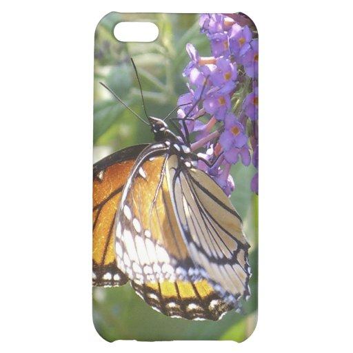 Caso de cáscara de la mariposa de monarca #2