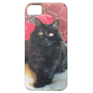 caso de encargo 5 del iphone iPhone 5 funda