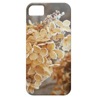 Caso de Frost IPhone 5 de la planta del invierno iPhone 5 Fundas