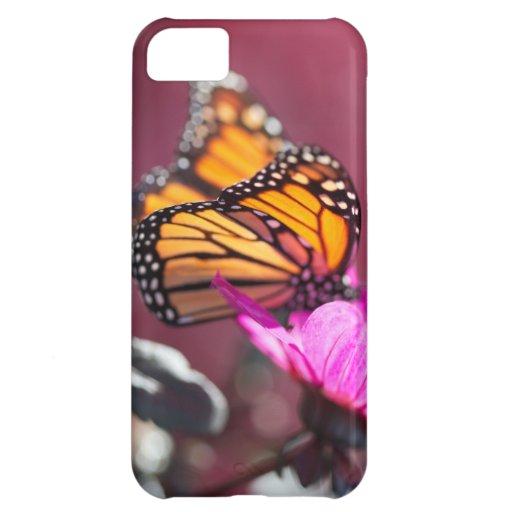 Caso de IiPhone 5 de la mariposa de monarca