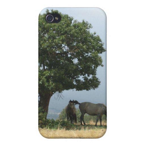 caso de iPhone4/4s: Caballos en España iPhone 4/4S Carcasas