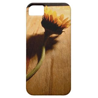 Caso de Iphone 4 iPhone 5 Fundas