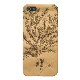 Caso de Iphone 5 (árbol inspirado japonés) iPhone 5 Coberturas