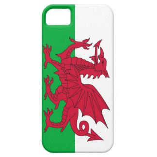 Caso de IPhone 5 con la bandera de País de Gales iPhone 5 Case-Mate Protector